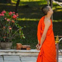 At Wat Xieng Thong Garden