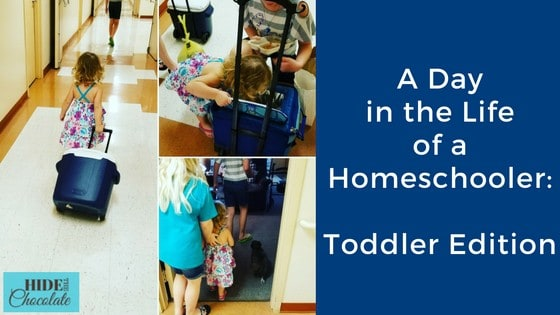 A Day in the Life of a Homeschooler: Toddler Edition