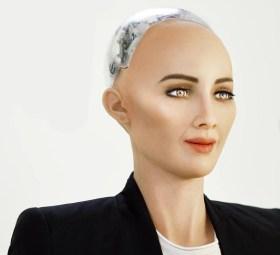 hanson robotics