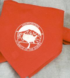 Bandana – Red with Club logo in silver