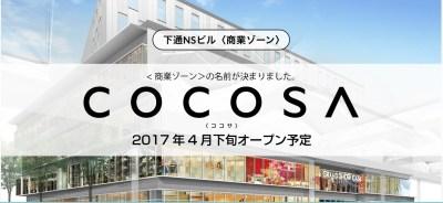 cocosa-1