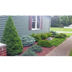 Small Crop Of Best Landscaping Photos