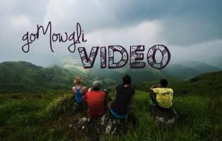 gomowgli video, one month in karnataka