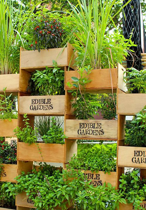 Amazing Ways To Plant A Vertical Garden How To Make A Vertical Garden Ways To Plant A Vertical Garden How To Make A Vertical Soda Bottle Vertical Garden