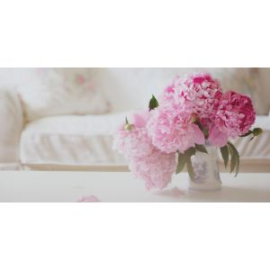 Fantastic Urdu Hindi Peony Flower Meaning Light Pink Peonies Clear on meaning in urdu, meaning in french, meaning in spanish,