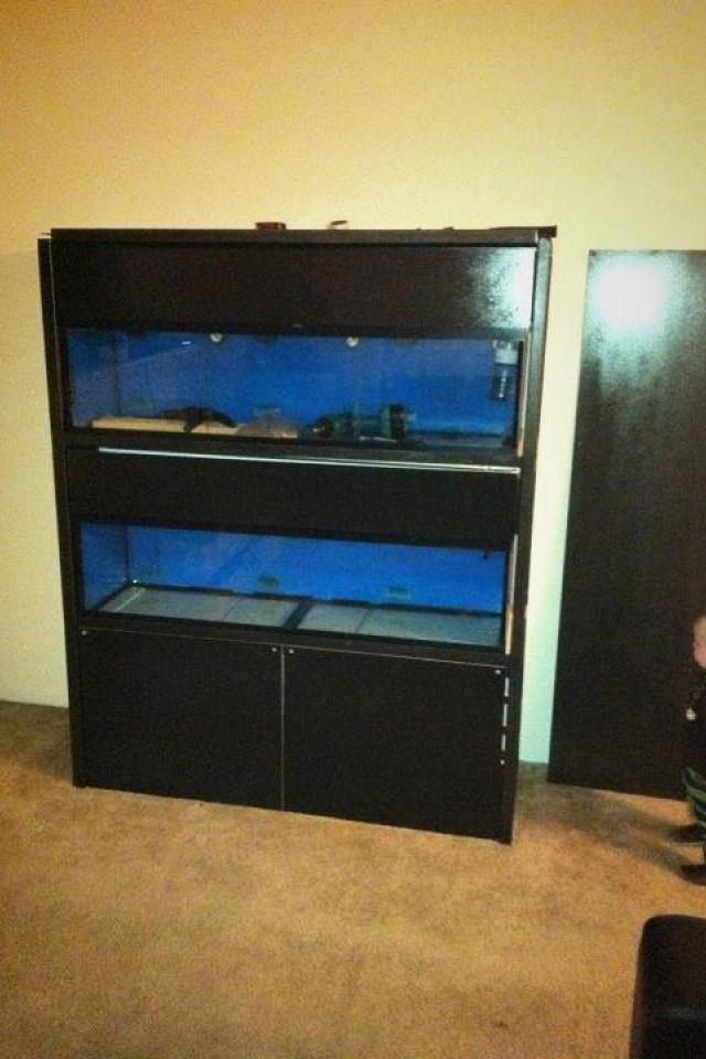 tier fish tank stand and tanks for sale in Puyallup | HipSwap