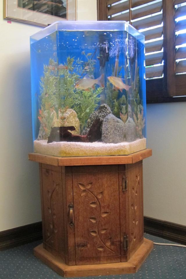 100 gallon fish tank 100 100 gallon fish tank with all for Hexagon fish tank with stand