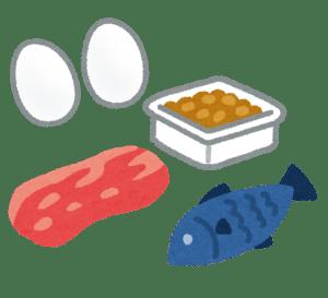 タンパク質食事