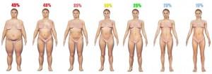 体脂肪率身体女