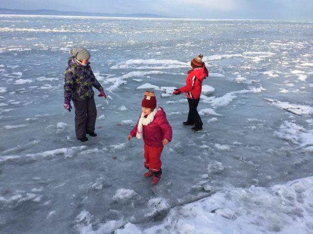 zamárdi jég 1