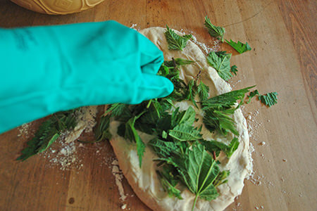kneading nettle leaves into dough wearing kitchen gloves