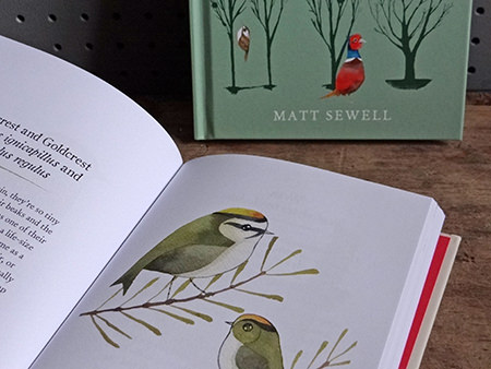Pair of bird books by Matt Sewell