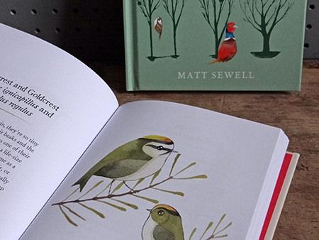 Pair of bird books by Matt Sewell