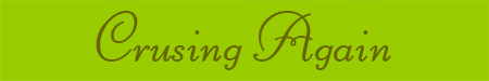 'Cruising Again' blog post banner