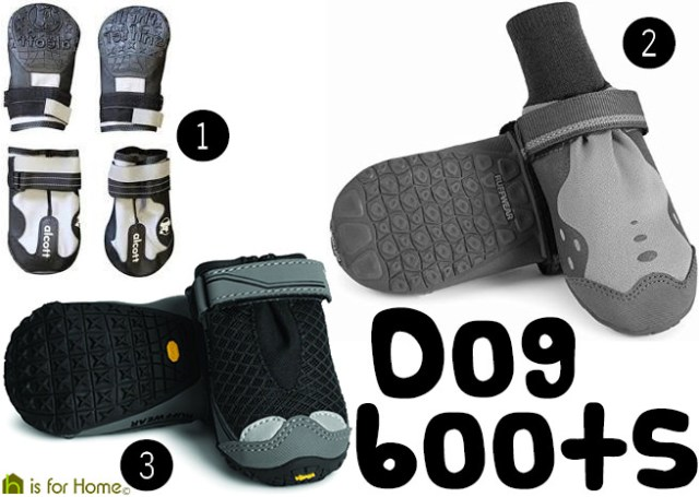 Selection of dog boots   H is for Home