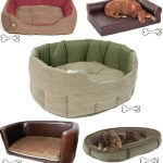 Gimme Five: Dog beds