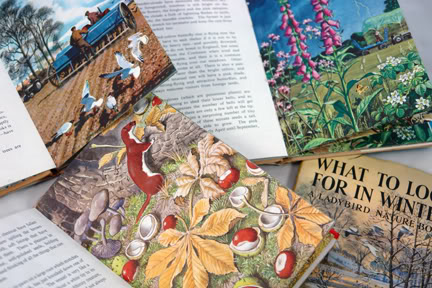Group of vintage Ladybird books showing autumn scenes | H is for Home