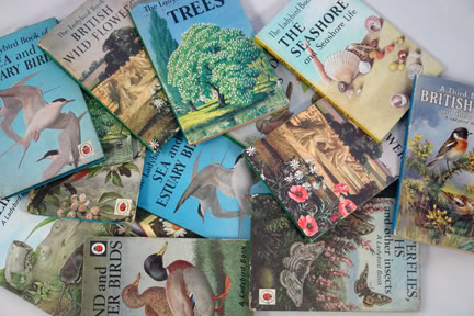 Collection of vintage nature Ladybird books | H is for Home