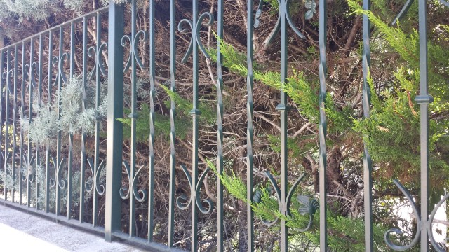 Verja de hierro decorada
