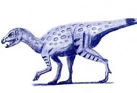 De Heterodontosaurus