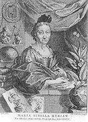 Maria Sibylla Merian - Afb: historici.nl