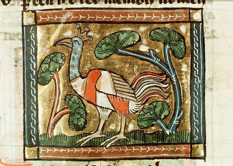 Uit: Jacob van Maerlant, Der naturen bloeme. Midden 15de eeuw. (KB)