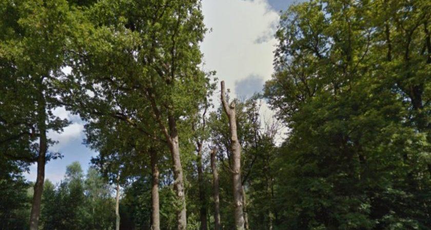 WOII-munitie zorgt voor brandgevaar in Apeldoorn