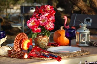 dsc_0072-happy-thanksgiving.jpg