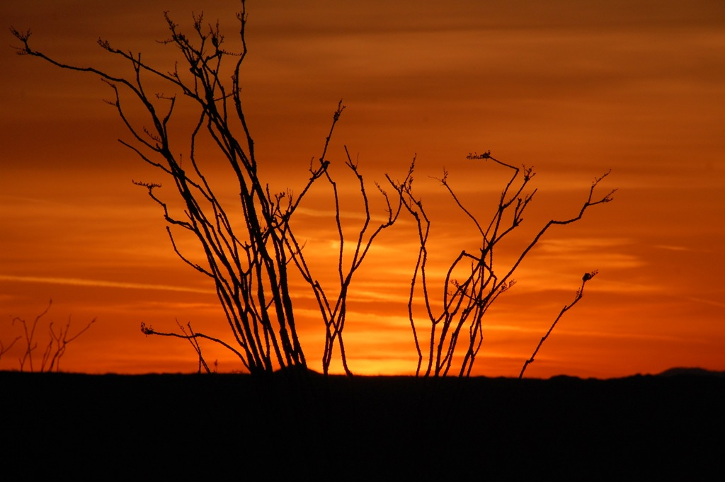 DSC_0307 Heat before sunrise