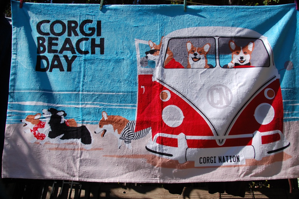 dsc_0005-corgi-nation-beach-day-towel