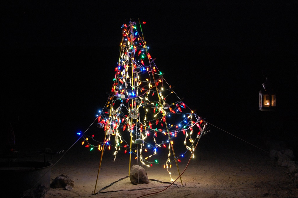 dsc_0132-tree-of-lights-at-night