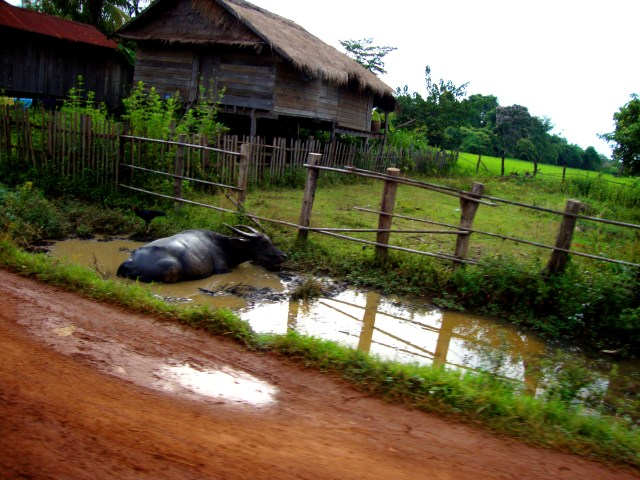 Bumpy and flooded dirt roads in Laos - On the road, Laos, Laotian malady