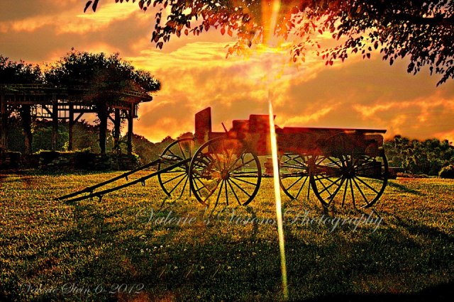 Lavender Fields. Carousel Farms, Bucks County, Pennsylvania, USA - by Valerie Griffis Cullen-stein