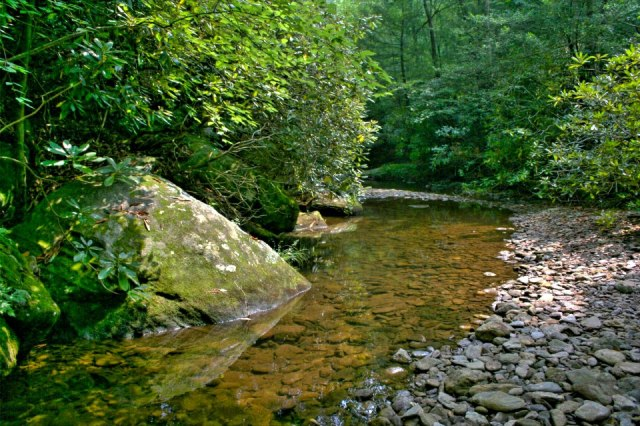 Harry Hoover - South Mountain State Park, North Carolina, United States