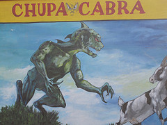 chupacabra photo
