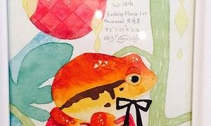 カエルの入門編~カエル好きになったばかりの人におすすめ~