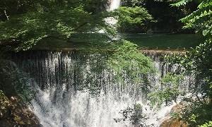 カジカガエルを探しに行く旅 布引の滝