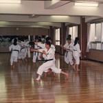 1989osea-10