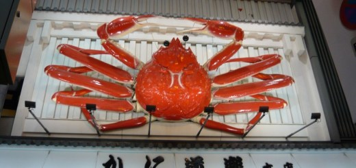 Big Famous Crab in Osaka