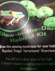 glow in the dark habitat kit