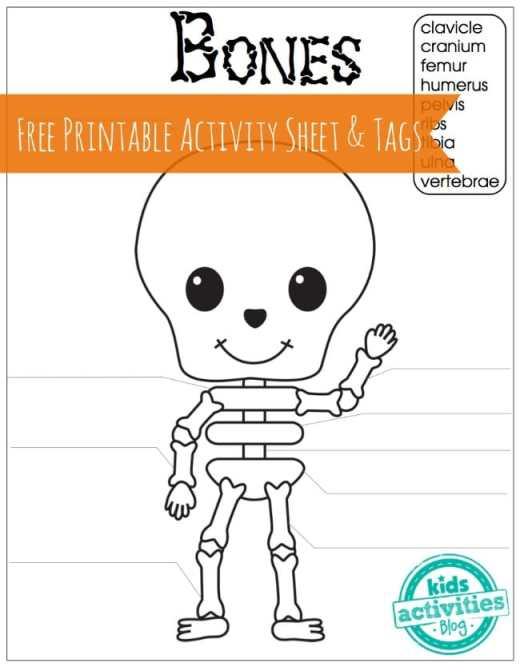 BIOLOGY Skeleton Bones Free Printable Activity Sheet