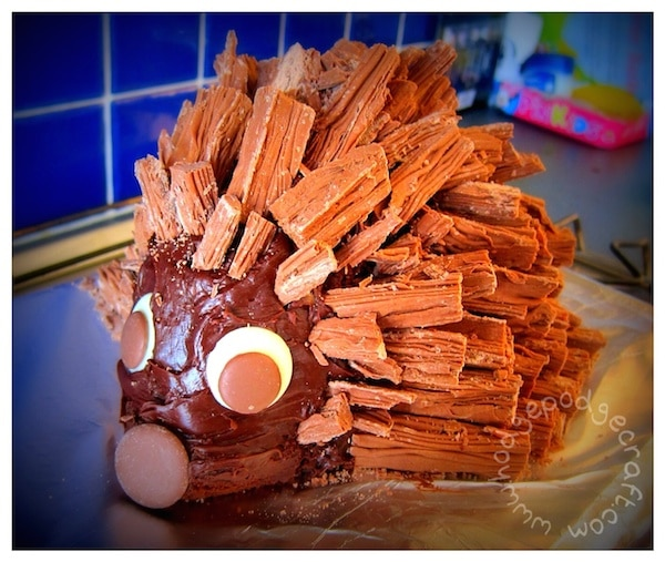 how to make the best chocolate hedgehog cake