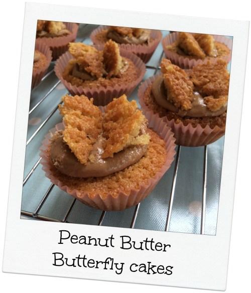Peanut butter cakes