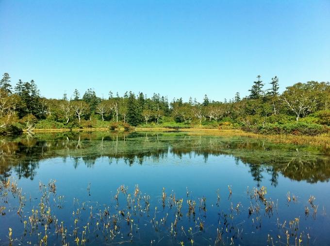 神仙沼の景色