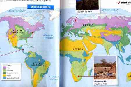 Biomes of the world asu ask a biologist world biomes biome map of the biomes of the world biomes of the world map sciox Image collections