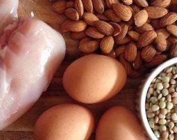 Protein og rehabilitering