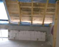 Schimmelbefall im Dachstuhl