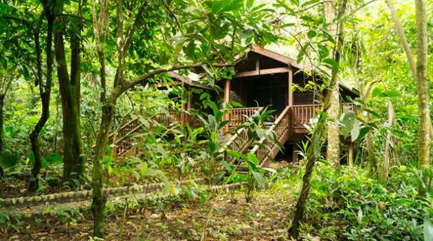 pico cabin2