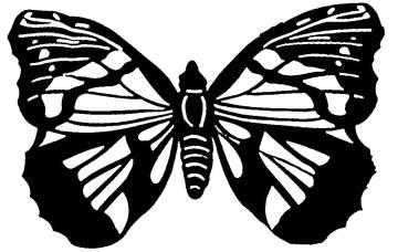 трафареты бабочек бесплатно