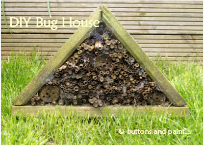 DIY Bug House